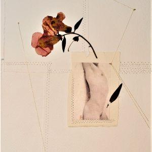 6 ADONE 2020 - 30 x 21 cm - foto su carta cotone- fiore essicato - cuciture - filo argento