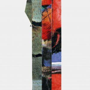 Alberto Vitacchio - i d 17,5x50 2010