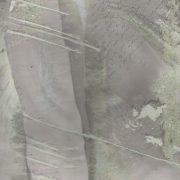 Andreina-Argiolas-_-libro-veneziano-_-tecnica-stampa-giapponese-Suminagashi-25x35cm-particolare-di-una-pagina-