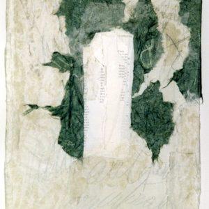 Carla Bertola variazioni in tema 29x40 2014