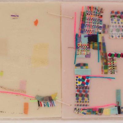 Palmi Latino, Meditazione sul divenire dolce delle cose, 36x25x1,5, teca in plexiglass, tessuto, cera, 2016